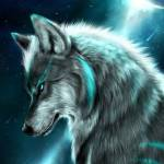 Wolf Man Profile Picture